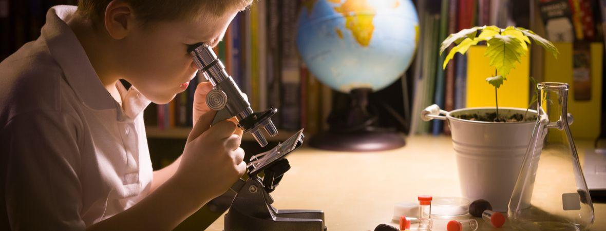 Скидки на курсы по биологии, географии, химии и ОБЖ